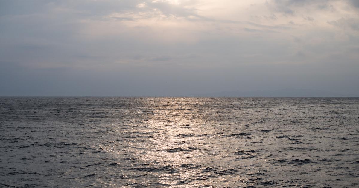 【鹿児島移住】4年ぶりに鹿児島で生活して感じた「過ごしやすさ」と「物足りなさ」