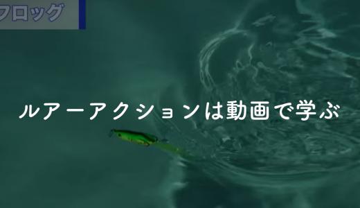 【初心者オススメ】ルアーアクションは「Honda 釣り倶楽部」の解説動画で学べ