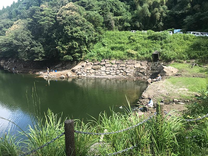 竹山ダムの大規模なワンド